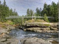 Walking Group - Top Bridge