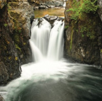 Easy Walking - The Canyon, Qualicum