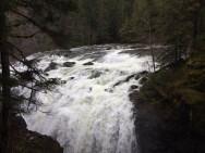 Easy Walking - Englishman River Falls